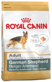 Royal Canin BHN German Shepherd Adult 3kg