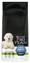 Pro Plan Large Robust Puppy 12kg