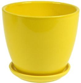 Polnix Amsterdam 13 x 12cm Yellow