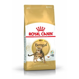 KASSITOIT ROYAL CANIN BENGAL 2KG