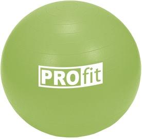 ProFit Exercise Ball 55cm Green