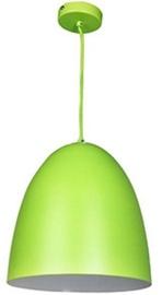 Nino Viola 30220114 Green