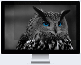 "Natec Owl Privacy Filter 23.8"" 16:9"