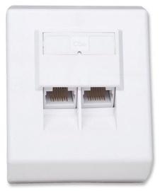Intellinet Cat5e UTP Surface Mount Box White