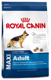 Royal Canin SHN Maxi Adult 4kg