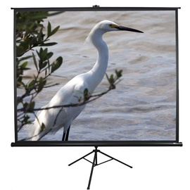 Elite Screens T119UWS1 Tripod Screen