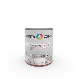 Pentacolor PentaPro Matt White 1l