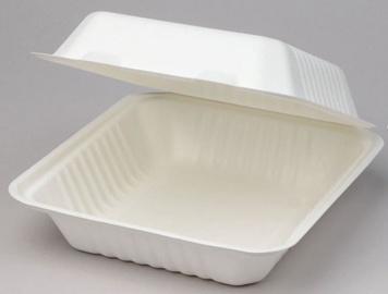 Arkolat BioBox Box 21.7x20.3x8cm 50pcs