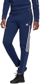 Adidas Tiro 21 Sweat Pants GK9676 Navy Blue XS