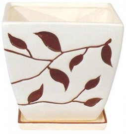 Polnix Deco 14 x 13cm Square Flowerpot with Decor