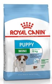 Koeratoit Royal Canin Mini Puppy, 2 kg