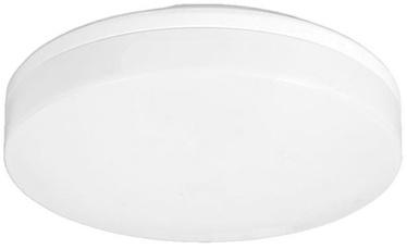 Verners Gamma RCR 10W LED White