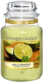 Yankee Candle Classic Large Jar Lime & Coriander 623g