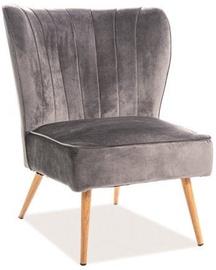Söögitoa tool Signal Meble Legno Velvet Grey/Oak