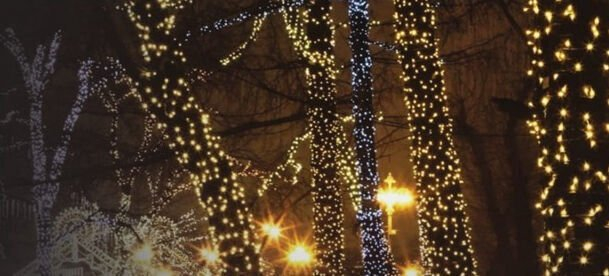 Jõulutuled Niveda Outdoor LED 200 White/White Flash, 20 m