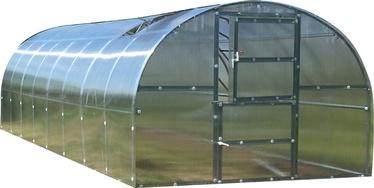 Kasvuhoone Klasika Baltic LT, 800x300x210 cm