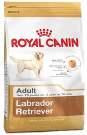 Royal Canin BHN Labrador Retvrievier Adult 12kg