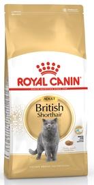 Kassitoit Royal Canin FBN British Shorthair, 400 g