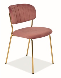 Стул для столовой Signal Meble Carlo Velvet Antique Pink/Gold, 1 шт.