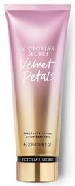 Victoria's Secret Fragrance Lotion 236ml 2019 Velvet Petals