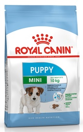 Royal Canin SHN Mini Puppy 8kg