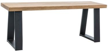 Kingariiul Signal Meble Ronaldo Oak/Black, 1200x350x450 mm