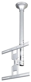 """NewStar FPMA-C400 Ceiling Mount 22-52"""" Silver"""