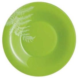 Luminarc Filicaria Dinner Plate D21.5cm Green