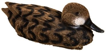 Besk Duck