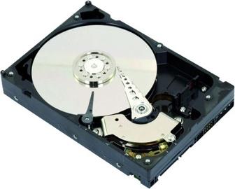 """Intenso Internal Hard Disk 6TB 7200RPM 64MB 3.5"""" SATAIII Retail Kit 6513143"""