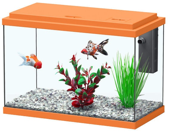Aquatlantis Funny Fish 50 Orange