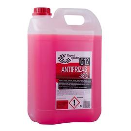 Expert Coolant G12 -36c 5l