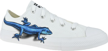 Converse Chuck Taylor All Star Junior Low Top Lizards 667532C White 37.5