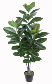 Home4you Rubber Plant 130cm