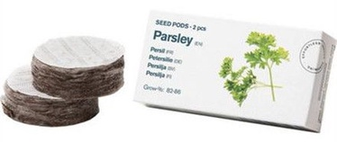 Tregren Parsley Seed Pods 2pcs
