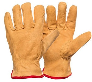 DD Smooth Calf Gloves With Warm Lining 10