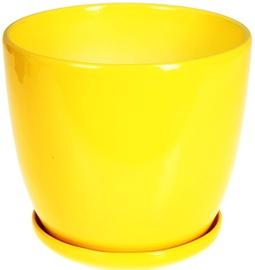 Polnix 02.446.17 Yellow