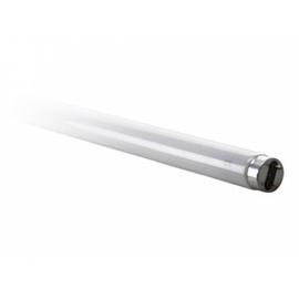 Lumin.toru Spectrum T8, 18W, G13, 3000K, 1650lm